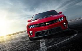 Обои Chevrolet, авто фото, тачки, авто обои, cars, ZL1, auto wallpapers