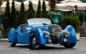 Обои синий, ретро, фон, Пежо, Peugeot, кусты, передок
