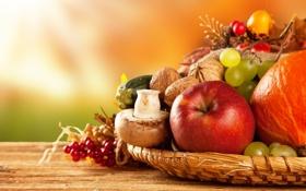 Обои осень, яблоки, грибы, урожай, виноград, тыква, фрукты