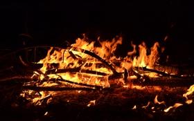 Картинка ночь, огонь, костёр