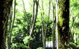 Обои лес, деревья, природа, листва, мох, арт, живопись