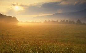 Картинка облака, горы, восход, Солнце, луг, Теннесси, Большой Дымный Горный Национальный парк
