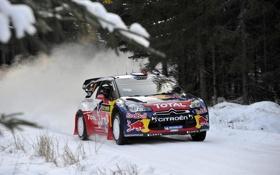 Картинка Зима, Снег, Лес, Citroen, DS3, WRC, Rally