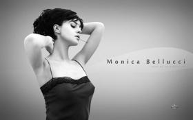 Картинка чёрно-белое, актриса, monica bellucci, моника беллучи