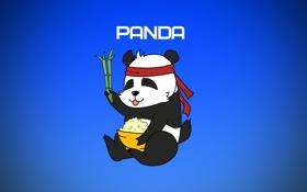 Обои панда, panda, картинки панды