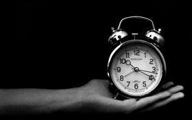 Обои время, часы, рука, будильник