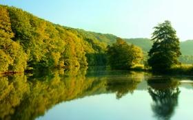 Обои осень, лес, озеро