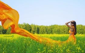 Картинка зелень, поле, лес, лето, трава, девушка, деревья