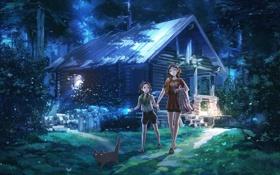 Картинка лес, девушка, арт, девочка, домик