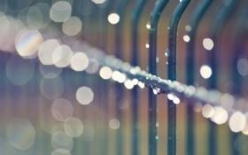 Обои капли, дождь, размытость, ограждение, wallpapers, боке, металлическое