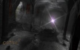 Обои скелет, склеп, мрачный, arcania, gothic 4