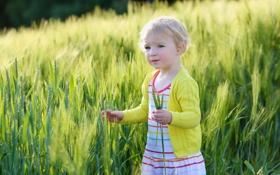 Картинка поле, колоски, девочка, ребёнок