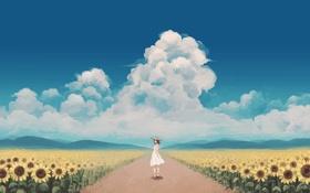 Картинка небо, облака, подсолнухи, Девушка