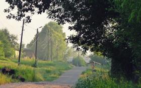 Обои ветки, село, колодец, поселок. дорога, провода, дерево, деревня