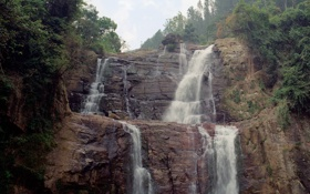 Обои деревья, трещины, скалы, водопад, кусты