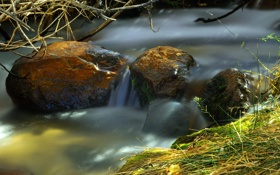 Картинка трава, ручей, камни, поток