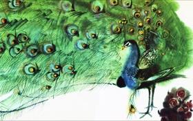 Картинка зеленый, стиль, перья, Птицы, арт, акварель, хвост