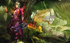 Картинка лес, оружие, огонь, магия, Девушка, эльфийка