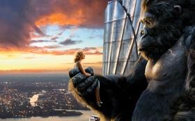 Обои взгляд, закат, город, кино, фильм, высота, блондинка