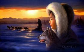 Картинка зима, собаки, арт, девочка, упряжка, Tok Hwang
