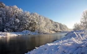 Обои снег, деревья, река