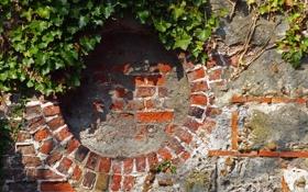 Картинка листья, стена, камень, круг, кирпич, окно, кладка