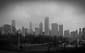 Обои туман, небоскребы, ч/б, чикаго, Chicago