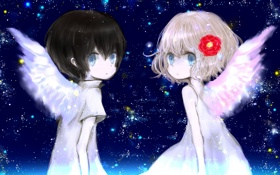 Картинка цветок, небо, звезды, крылья, аниме, мальчик, арт