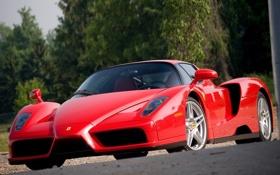 Обои Феррари, передок, суперкар, Энцо, Ferrari, фон, Enzo