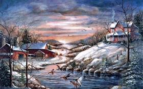 Обои холод, зима, животные, снег, птицы, утки, дома