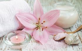 Картинка цветок, лилия, свеча, полотенце, крем, морская соль