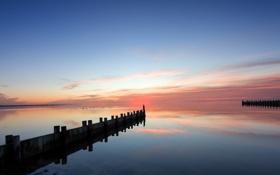 Картинка море, закат, чайки