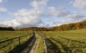 Картинка дорога, небо, солнце, облака, забор, поля, вечер