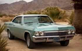 Обои Chevrolet, Шевроле, классика, 1965, Coupe, передок, Импала