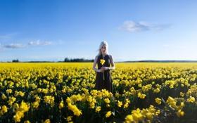 Обои девушка, поле, настроение, цветы, лето