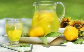 Обои стакан, лимон, подсолнух, кувшин, Лимонад