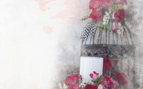 Обои цветы, розы, свеча, клетка