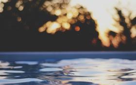 Картинка вода, бассейн, боке