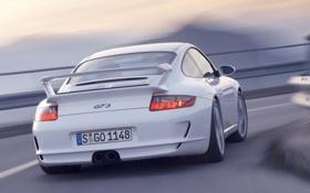 Обои дорога, природа, Porsche, порш