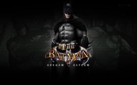 Обои взгляд, batman, Batman arkham asylum