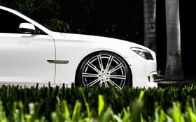 Обои белый, трава, газон, бмв, BMW, диски, семёрка