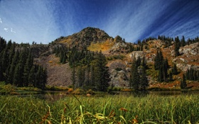 Обои лес, трава, озеро, the grass around lake martha, гора
