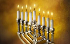 Обои пламя, праздник, свеча, семисвечник