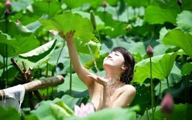 Обои лето, вода, девушка, лилии, азиатка