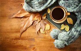 Обои осень, листья, кофе, шарф, чашка, hot, autumn