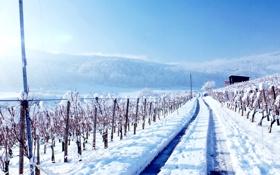 Обои дорога, пейзаж, природа, фото, Зима, даль, Горы