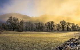 Картинка иней, поле, забор, утро