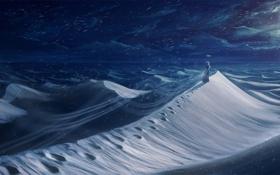 Картинка свет, снег, следы, силуэт