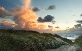 Картинка песок, море, трава, облака, ветер