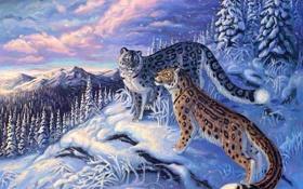 Обои зима, снег, рисунок
